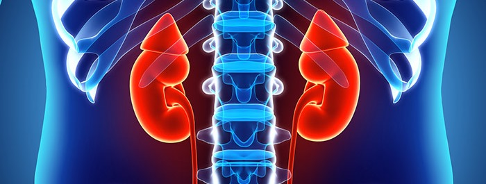 Adrenal tumours: new research recommends update to healthcare guidelines