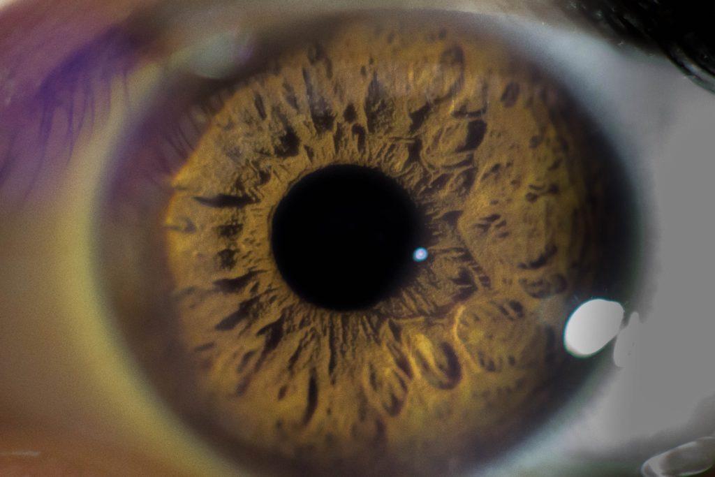 close up of the eyeball