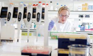 A BioHub researcher