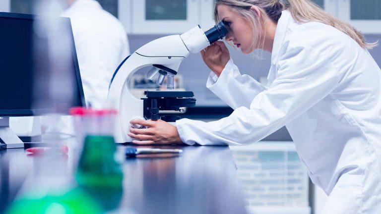 Laboratory work - looking through microscope