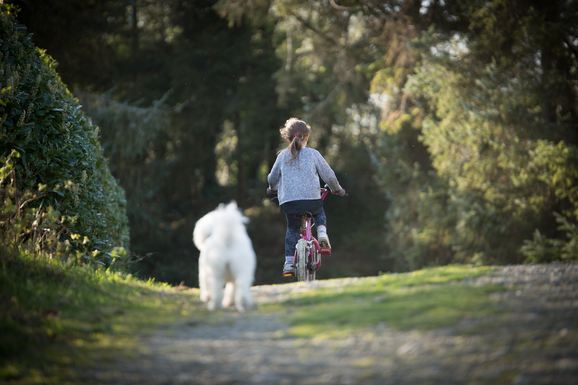 girl on bike ride, with dog